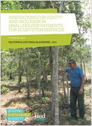 Innovations for equity and inclusion in smallholder payments for ecosystem services