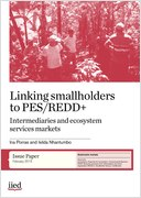 Linking smallholders to PES/REDD+ intermediaries and ecosystem service markets