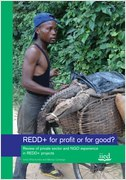 REDD+ for profit or for good? Review of private sector and NGO experience in REDD projects
