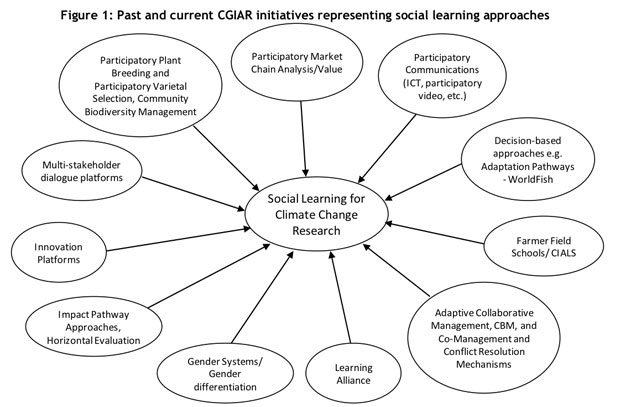 Figure illustrates the diversity of social learning initiatives in CGIAR