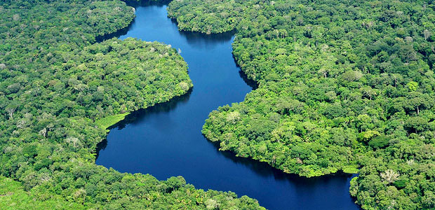 Aerial view of the Amazon Rainforest. Photo by Neil Palmer/CIAT