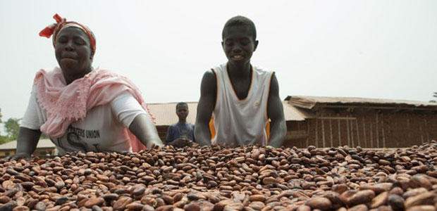 People spread cocoa beans on a drying table in Ghana.