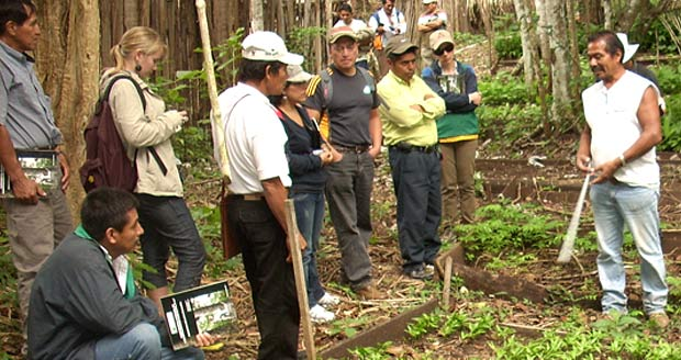 Visitors from Guatemala and Peru take a tour of a cooperative tree nursery in Petén, Guatemala managed by a local forest-dwelling community. Photo: Growing Forest Partnerships.