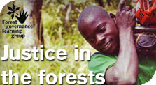 Justice in the forests