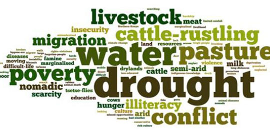 Words journalists associated wth pastoralists, with word-size reflecting how often a journalist used it..