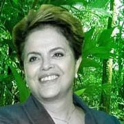 Mother Brazil: a way forward for the rainforest?