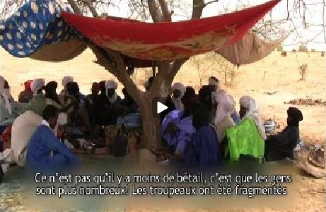 Planning with Uncertainty: pastoralism videos