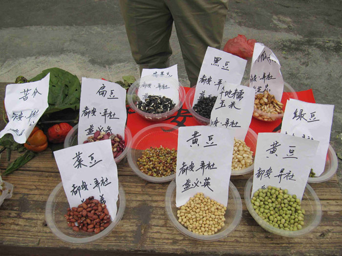 Bowls containing different seeds and Chinese labels
