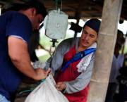 Weighing sacks of coffee beans in Colombia's southwestern Cauca department (Photo: Neil Palmer/CIAT)