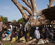 A market takes place in the village of Tiogo next to the Tiogo Forest in Burkina Faso. With much of the food and hand crafts on sale from the forest, the community is dependent on the conservation of the forest to maintain their livelihoods (Photo: CIF Action, Creative Commons, via Flickr)