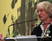 IIED director Camilla Toulmin speaks in a plenary session on day one of IIED's Fair Ideas event in Rio de Janeiro, June 2012 (Photo: Tom Broadhurst/IIED)