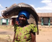 A woman carries a Nile perch landed at Got Kachola, Kenya, where the NGO Renewable World is establishing community-run energy hubs for fish chilling and other local energy needs (Photo: Sarah Best/IIED)