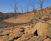 New Melones Lake, California, which is facing one of the most severe droughts on record with a state of emergency declared in January (Photo: Ben Amstutz, Flickr, via Creative Commons)