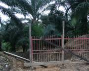 A gate blocks access to the customary lands of the Long Teran Kanan people in Sarawack. Malaysia has seen a huge expansion of oil palm plantations backed by international investors. The customary rights of local people are often ignored (Photo: Wakx, Creative Commons via Flickr)