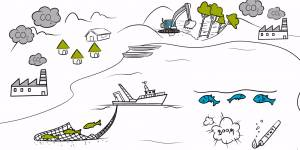 Watch an animation produced by IIED to highlight its sustainable fisheries work