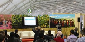 IIED's Krystyna Swiderska discusses the latest research on how indigenous people adapt to climate change at a side event at the 2016 UN climate conference in Marrakech (Photo: Teresa Corcoran/IIED)