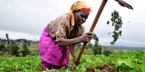 A Kenyan woman farmer at work in the Mount Kenya region (Photo: Google licence)