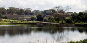 """Lilongwe's residents call it the """"Garden City"""" because of its many green spaces (Photo: Gome Jenda )"""