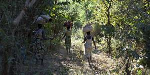 Villagers walk through Meceburi Forest Reserve, near Nampula, in Mozambique (Photo: Mike Goldwater/IIED)