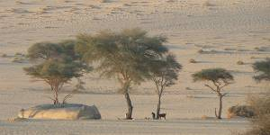 While one of the objectives of the 2014 World Day to Combat Desertification is to strengthen the visibility of the drylands on the international environmental agenda, much more is needed (Photo: Marie Monimart)