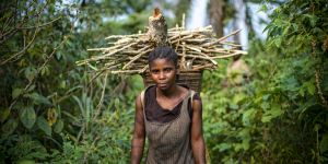A woman carries firewood in the Congo Basin rainforest (Photo: Ollivier Girard/CIFOR, Creative Commons via Flickr)