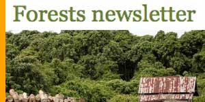 The third Forestry email newsletter was issued by IIED this week