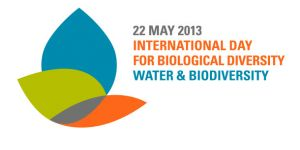 International Biodiversity Day logo