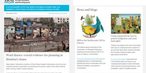 IIED's December newsletter (Image: IIED)