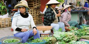 Hội An, Vietnam: in many towns in the developing world, street vendors constitute a significant share of total employment in the informal economy (Photo: Khánh Hmoong, Creative Commons via Flickr)