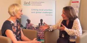 discuss the ways in which IIED has contributed to global change (Photo: Matt Wright/IIED)