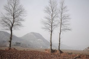 Formerly arable land is seen dried in Fuyuan county due to drought in southwest China's Yunnan province, an area known for its mild climate (Photo: Mingjia Zhou, Creative Commons, via Flickr)
