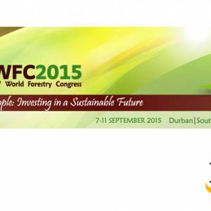 Members of IIED's Natural Resources Group and their research partners are attending this year's World Forestry Congress, and will play a key role in a number of events and activities (Image: World Forestry Congress/IIED)