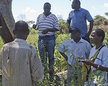 A field team designing a REDD strategy talk to a farmer in Mozambique (Photo: Mike Goldwater)