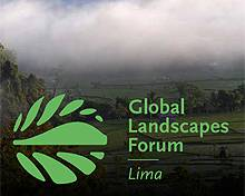 The Global Landscapes Forum will discuss the newest in REDD+ governance, incentives for sustainable land investments and innovations in land-use monitoring (Photo: Global Landscapes Forum)