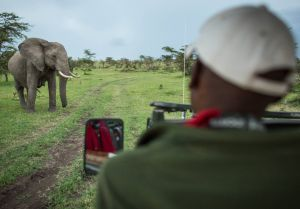 A trainee guide in a nature reserve in Kenya (Photo: Stuart Price/Make it Kenya)