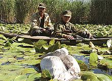 Guards protect Kazakhstan's wetlands, which are important for safeguarding the country's water resources (Photo: UNDP Kazakhstan)