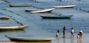 Seaweed farming in Nusa Lembongan, Bali, is an example of an alternative livelihood project (Photo: Yeowatzup via Creative Commons)