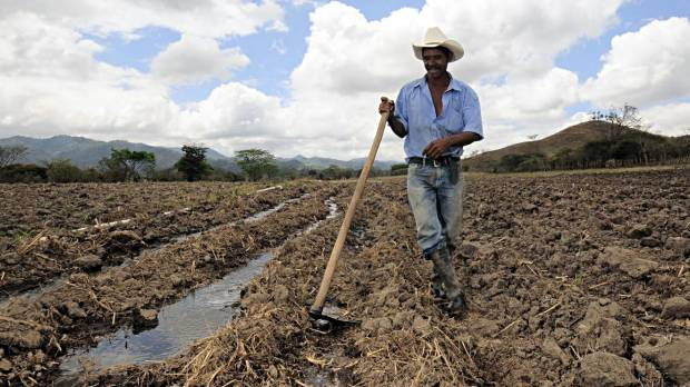 A maize farmer near Alauca, Honduras, takes a break from digging irrigation channels. Climate change in the form of higher temperatures and less rain is expected to have a big impact on Central American crops and farmers, and decision-makers need information on climate change adaptation (Photo: Neil Palmer/CIAT via Creative Commons)