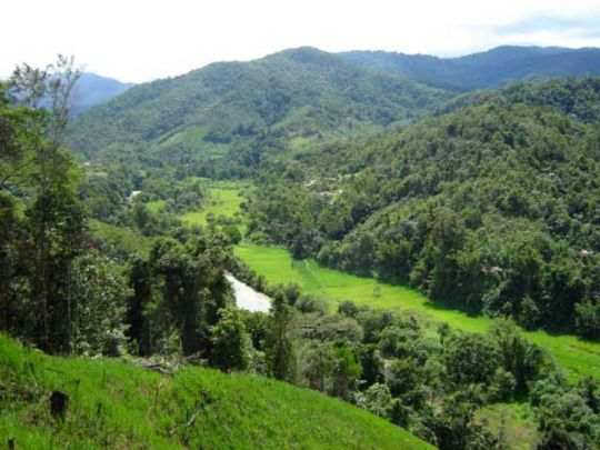 Panorama of Buayan village, Ulu Papar valley.