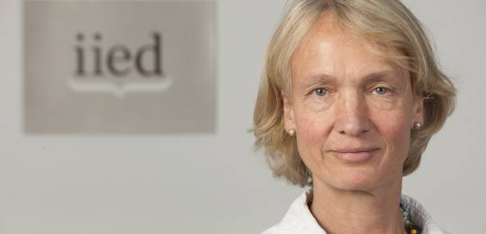 Camilla Toulmin has led IIED since 2004