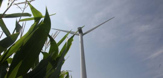 Renewable energy has a place to play in providing energy access to small farms (Photo via Google reuse rights))