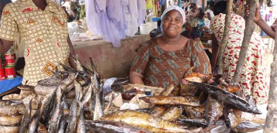 A fish seller at Nyakrom fish market in Agona District, Ghana. A reduction in fish production by 10,000 metric tonnes in Ghana would increase hunger and food insecurity from a 'moderate' to a 'serious' level (Photo: Google/Wikipedia licence)