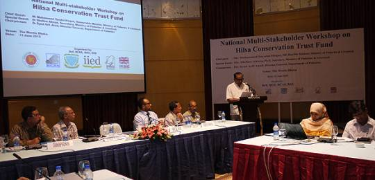 Delegates discuss the Hilsa Conservation Trust Fund at the Bangladesh workshop. The fund is part of work to enhance the effectiveness of incentive-based fisheries management (Photo: Essam Yassin Mohammed/IIED)