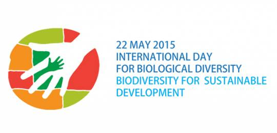 The theme of the 2015 International Day for Biological Diversity is 'biodiversity for sustainable development' (Image: Convention on Biological Diversity)