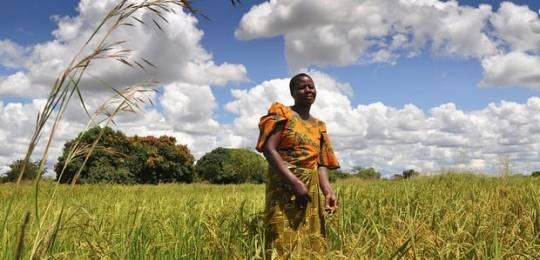 land rights and agricultural investment in ghana Acquisitions of agricultural land in africa by investors in various gulf states for  food  land, encouraging international access to land resources whose  ownership  some countries – ghana, mozambique, senegal and tanzania, for  example.