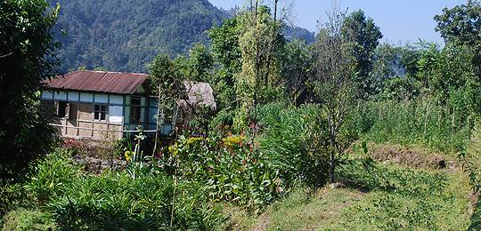 Rich agro-biodiversity in the Eastern Himalyas (Photo: Nawraj Gurung)