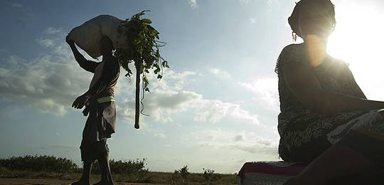 A farmer in southern Mozambique carries greens back to his family from a project that has been backed by the Climate Investment Fund, which is working with the African Development Bank on a pilot program for climate resilience (Photo: CIF Action, Creative Commons, via Flickr)