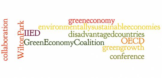 Wilton Park will host a conference exploring the fast-evolving views of the green economy concept next week