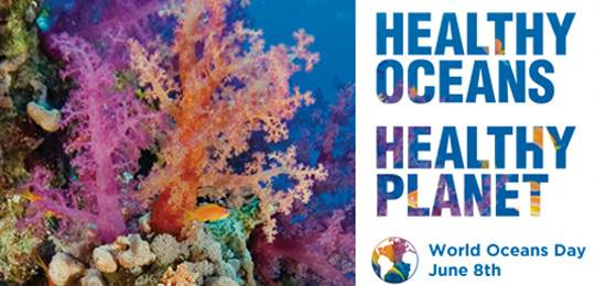 The theme for World Oceans Day on 8 June 2015 'healthy oceans, healthy planet' (Image: World Oceans Day)