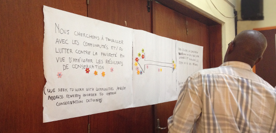 Participants at the meeting establish how their NGO works with communities in DRC (Photo: Alessandra Guiliani/IIED)